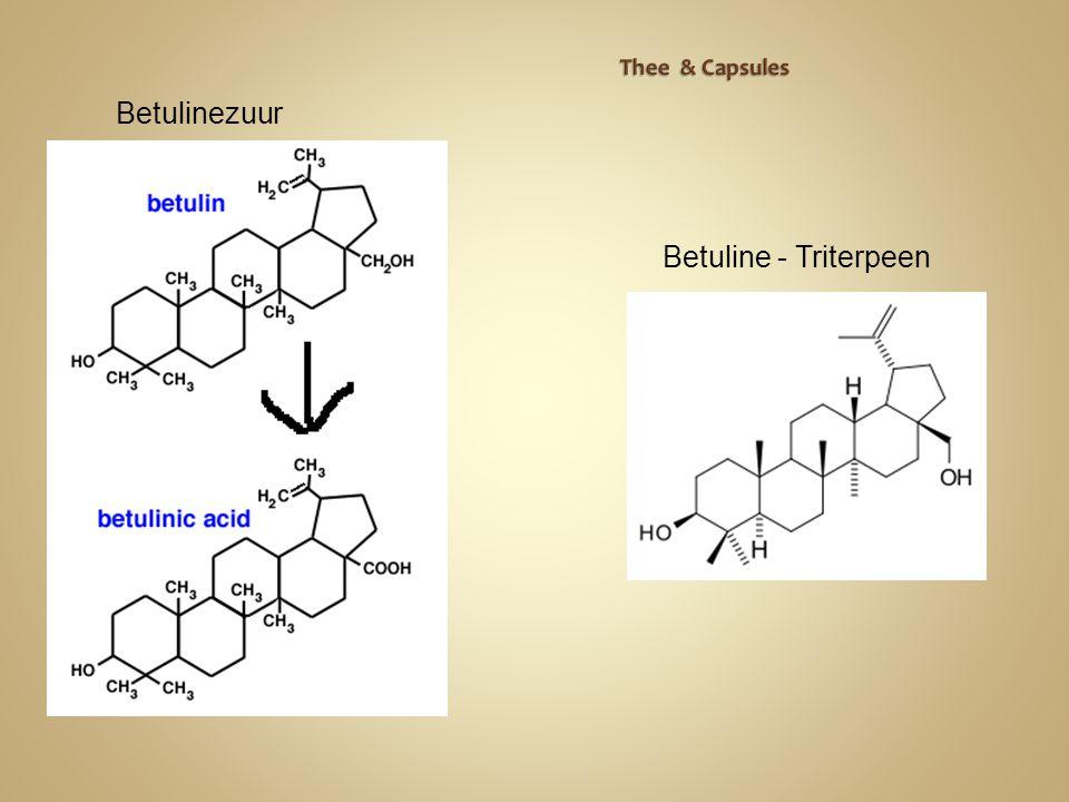 Betulinezuur Betuline - Triterpeen