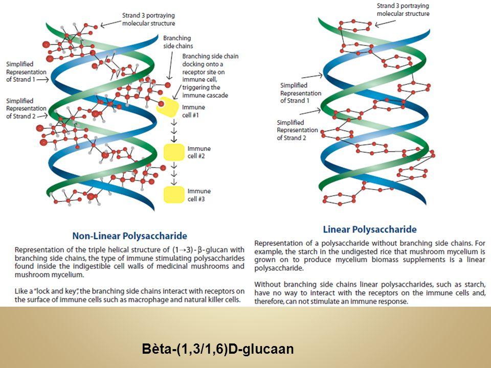 Bèta-(1,3/1,6)D-glucaan