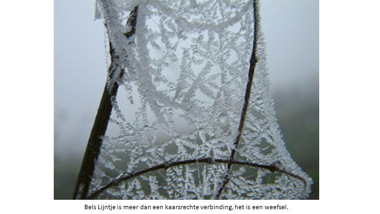Bels Lijntje is meer dan een kaarsrechte verbinding, het is een weefsel.