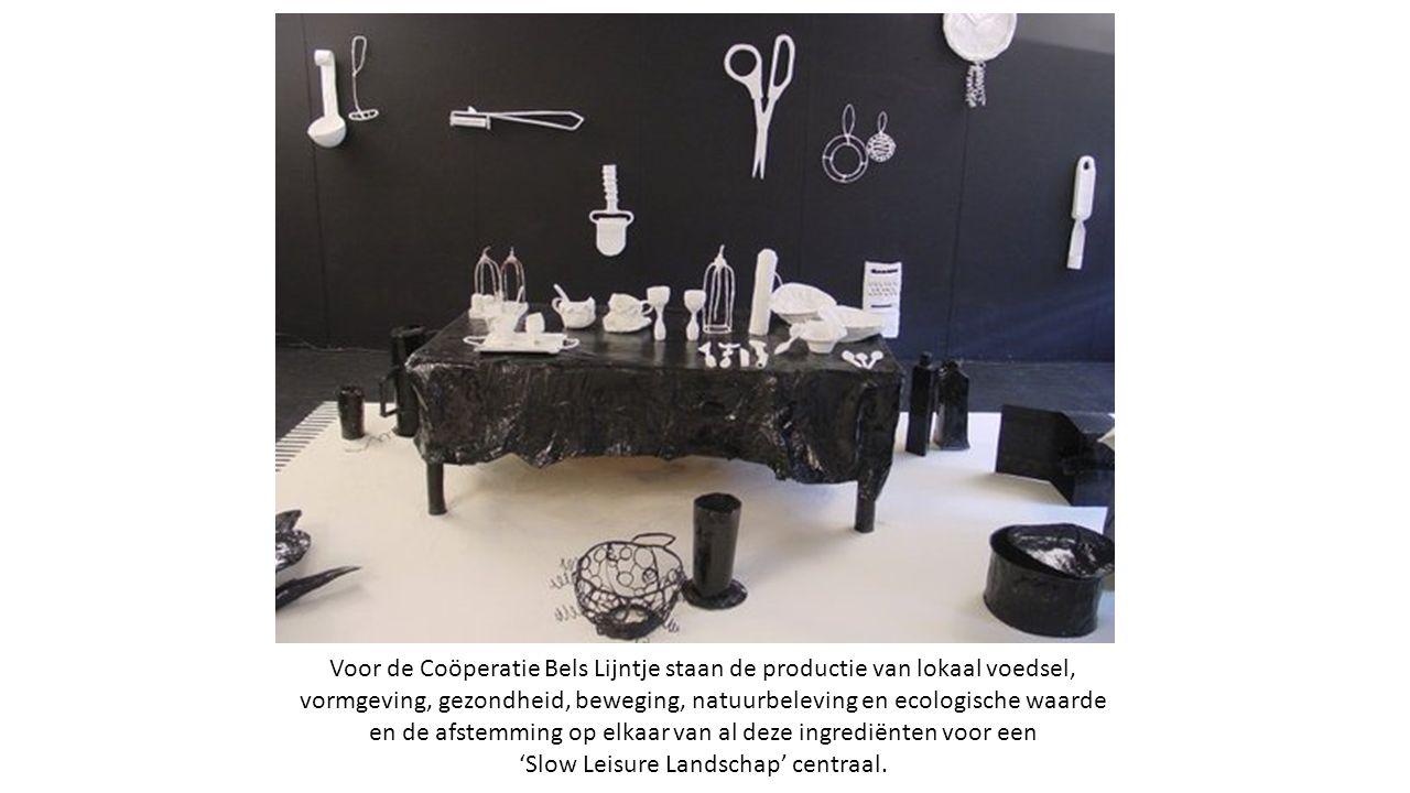 Voor de Coöperatie Bels Lijntje staan de productie van lokaal voedsel, vormgeving, gezondheid, beweging, natuurbeleving en ecologische waarde en de afstemming op elkaar van al deze ingrediënten voor een 'Slow Leisure Landschap' centraal.
