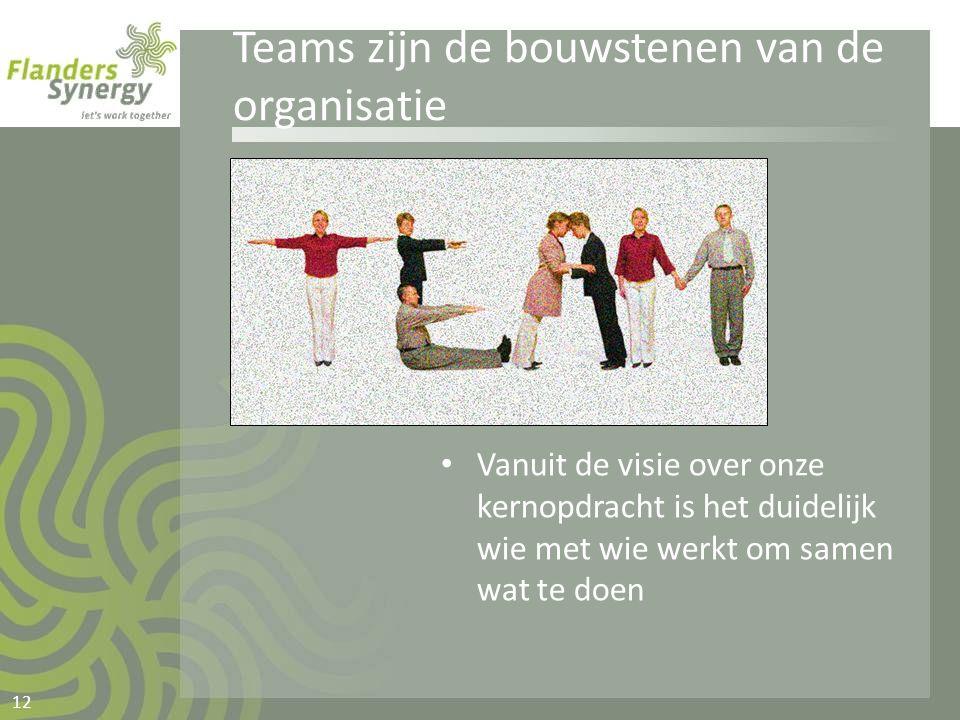 Teams zijn de bouwstenen van de organisatie • Vanuit de visie over onze kernopdracht is het duidelijk wie met wie werkt om samen wat te doen 12