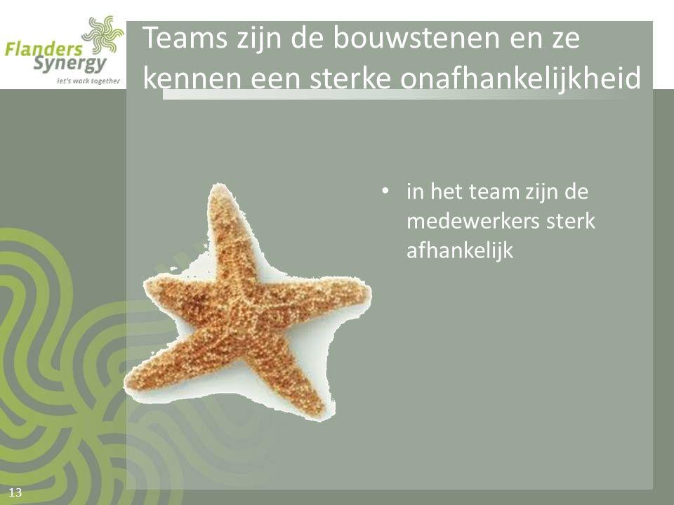 Teams zijn de bouwstenen en ze kennen een sterke onafhankelijkheid • in het team zijn de medewerkers sterk afhankelijk 13