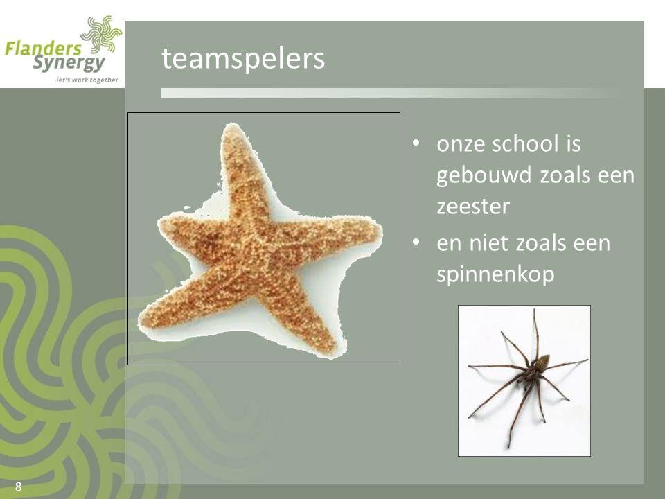 teamspelers • onze school is gebouwd zoals een zeester • en niet zoals een spinnenkop 8