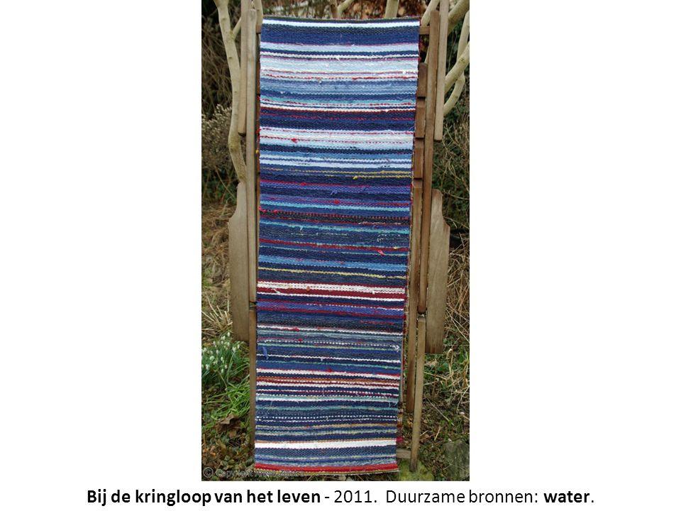 Bij de kringloop van het leven - 2011. Duurzame bronnen: water.