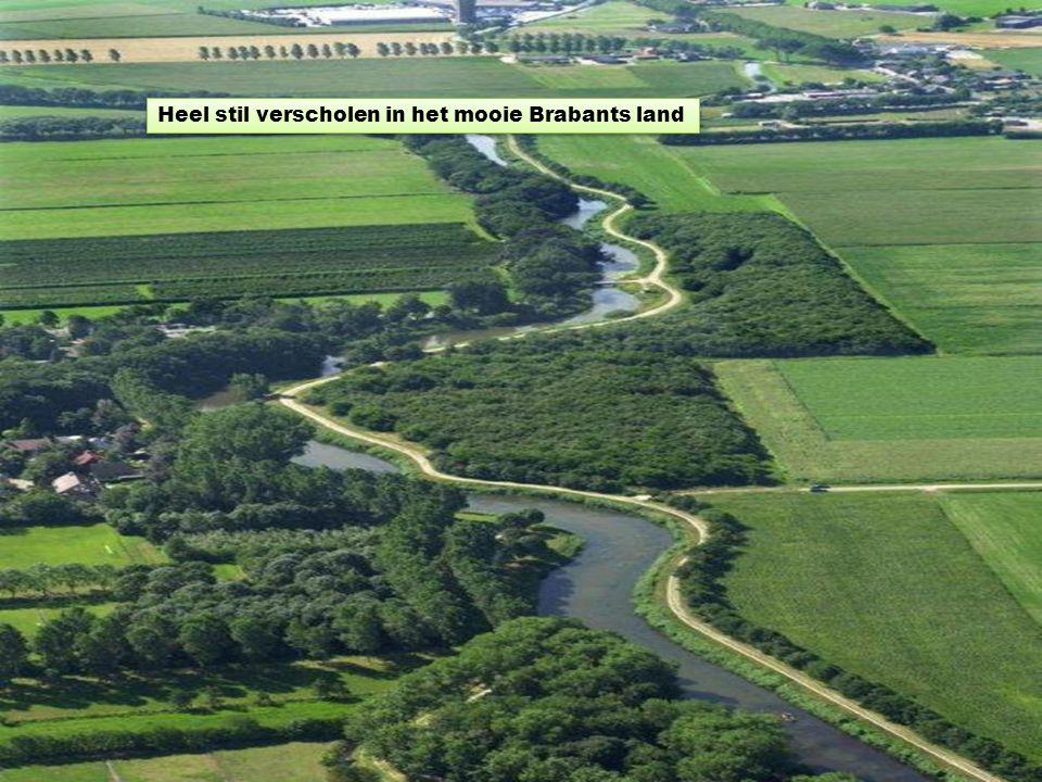 Heel stil verscholen in het mooie Brabants land
