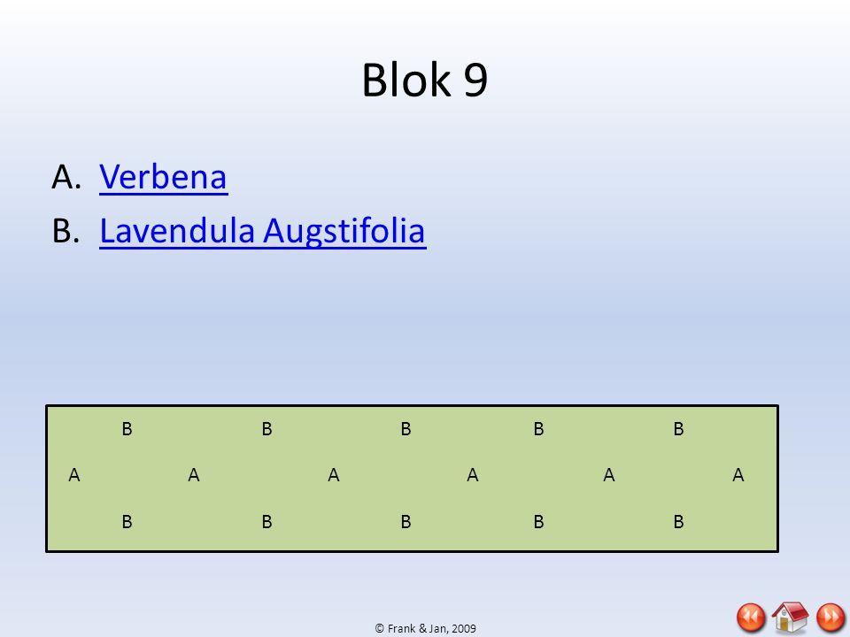 © Frank & Jan, 2009 Blok 9 A.VerbenaVerbena B.Lavendula AugstifoliaLavendula Augstifolia AAAAAA BBBBB BBBBB