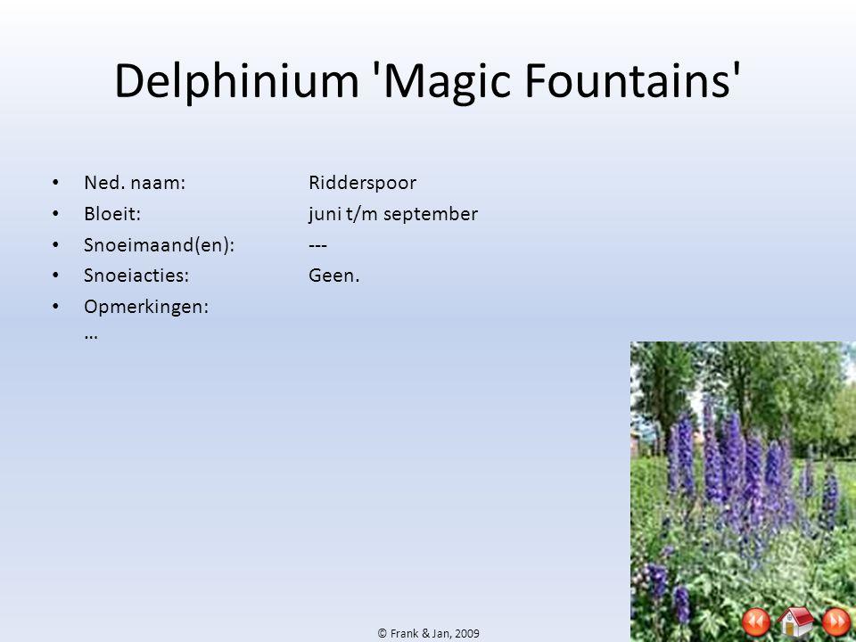 © Frank & Jan, 2009 Delphinium 'Magic Fountains' • Ned. naam:Ridderspoor • Bloeit:juni t/m september • Snoeimaand(en):--- • Snoeiacties:Geen. • Opmerk