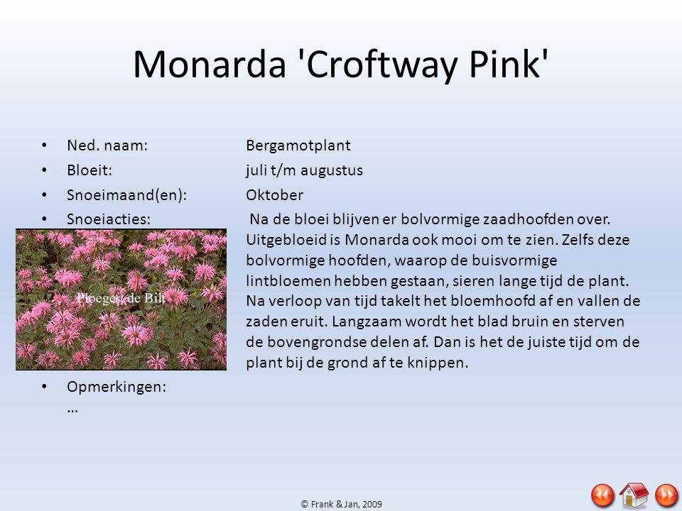 © Frank & Jan, 2009 Monarda 'Croftway Pink' • Ned. naam:Bergamotplant • Bloeit:juli t/m augustus • Snoeimaand(en):Oktober • Snoeiacties: Na de bloei b