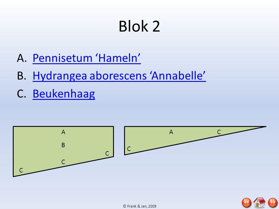 © Frank & Jan, 2009 Blok 2 A.Pennisetum 'Hameln'Pennisetum 'Hameln' B.Hydrangea aborescens 'Annabelle'Hydrangea aborescens 'Annabelle' C.BeukenhaagBeu