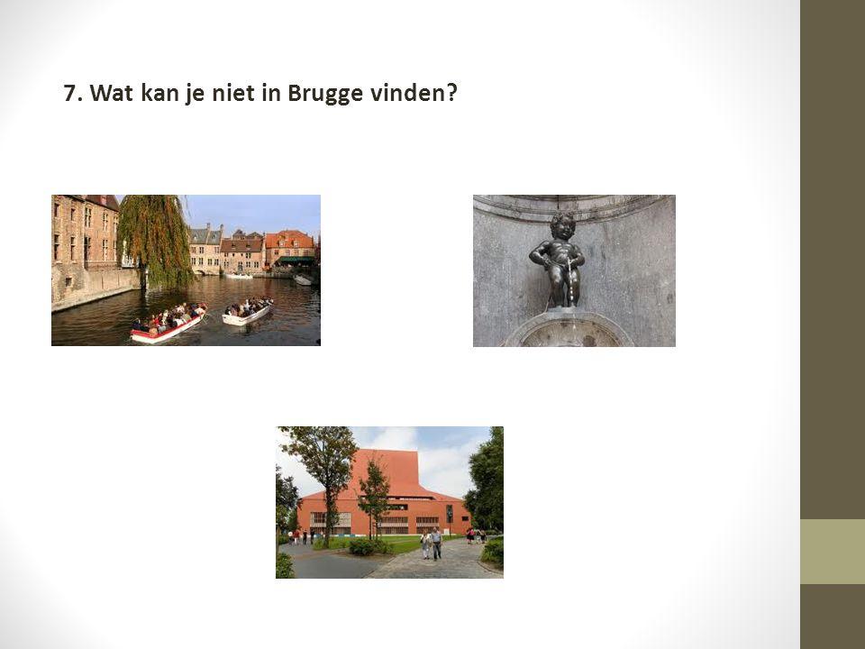 7. Wat kan je niet in Brugge vinden?