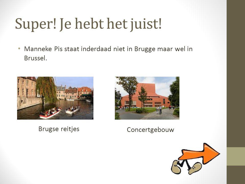 Super! Je hebt het juist! • Manneke Pis staat inderdaad niet in Brugge maar wel in Brussel. Brugse reitjes Concertgebouw