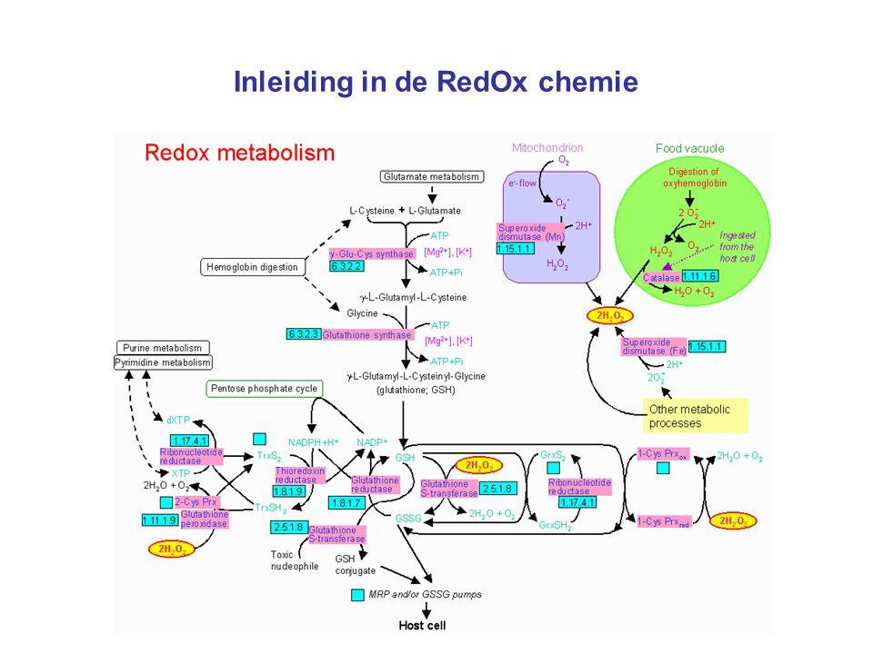 Inleiding in de RedOx chemie Halfreacties zelf opstellen Zoek in tabel 48 de halfreactie van de reductie van permanganaationen (MnO 4 - ) tot mangaan(II)-ionen (Mn 2+ ) op.