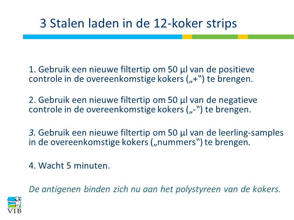 """3 Stalen laden in de 12-koker strips 1. Gebruik een nieuwe filtertip om 50 μl van de positieve controle in de overeenkomstige kokers (""""+"""") te brengen."""