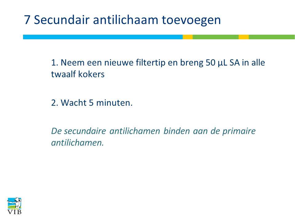 7 Secundair antilichaam toevoegen 1. Neem een nieuwe filtertip en breng 50 μL SA in alle twaalf kokers 2. Wacht 5 minuten. De secundaire antilichamen