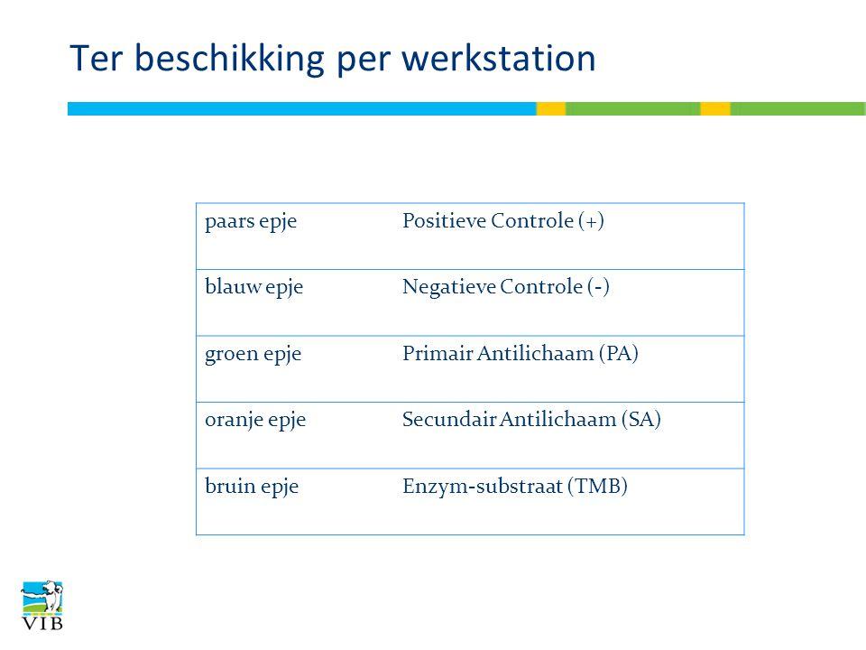 Ter beschikking per werkstation paars epjePositieve Controle (+) blauw epjeNegatieve Controle (-) groen epjePrimair Antilichaam (PA) oranje epjeSecund