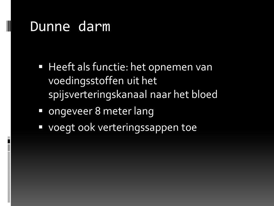 Dunne darm  Heeft als functie: het opnemen van voedingsstoffen uit het spijsverteringskanaal naar het bloed  ongeveer 8 meter lang  voegt ook verte