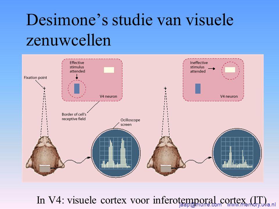 Desimone's studie van visuele zenuwcellen In V4: visuele cortex voor inferotemporal cortex (IT)