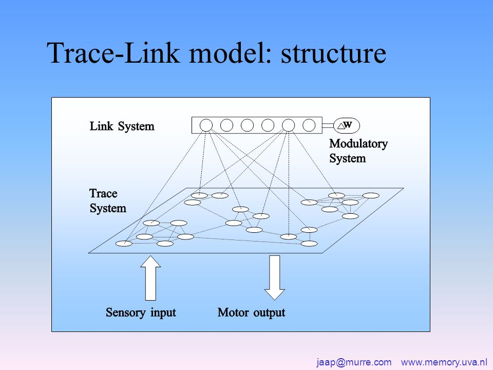 jaap@murre.com www.memory.uva.nl Trace-Link model: structure