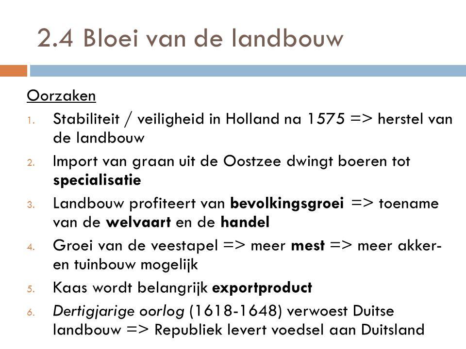 2.4 Bloei van de landbouw Oorzaken 1. Stabiliteit / veiligheid in Holland na 1575 => herstel van de landbouw 2. Import van graan uit de Oostzee dwingt