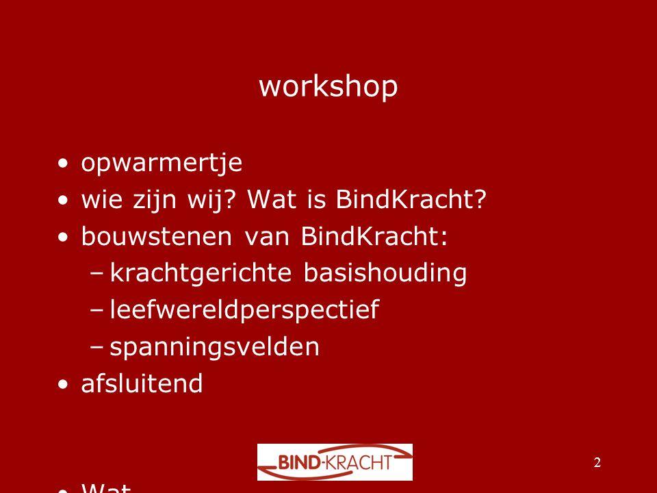 workshop •opwarmertje •wie zijn wij? Wat is BindKracht? •bouwstenen van BindKracht: –krachtgerichte basishouding –leefwereldperspectief –spanningsveld