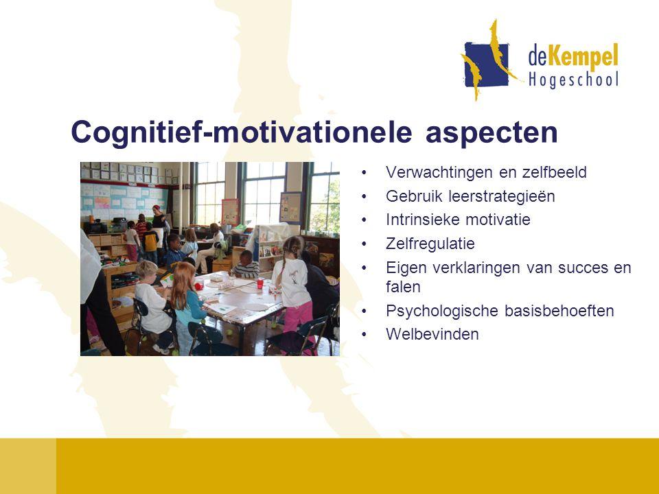 Cognitief-motivationele aspecten •Verwachtingen en zelfbeeld •Gebruik leerstrategieën •Intrinsieke motivatie •Zelfregulatie •Eigen verklaringen van su