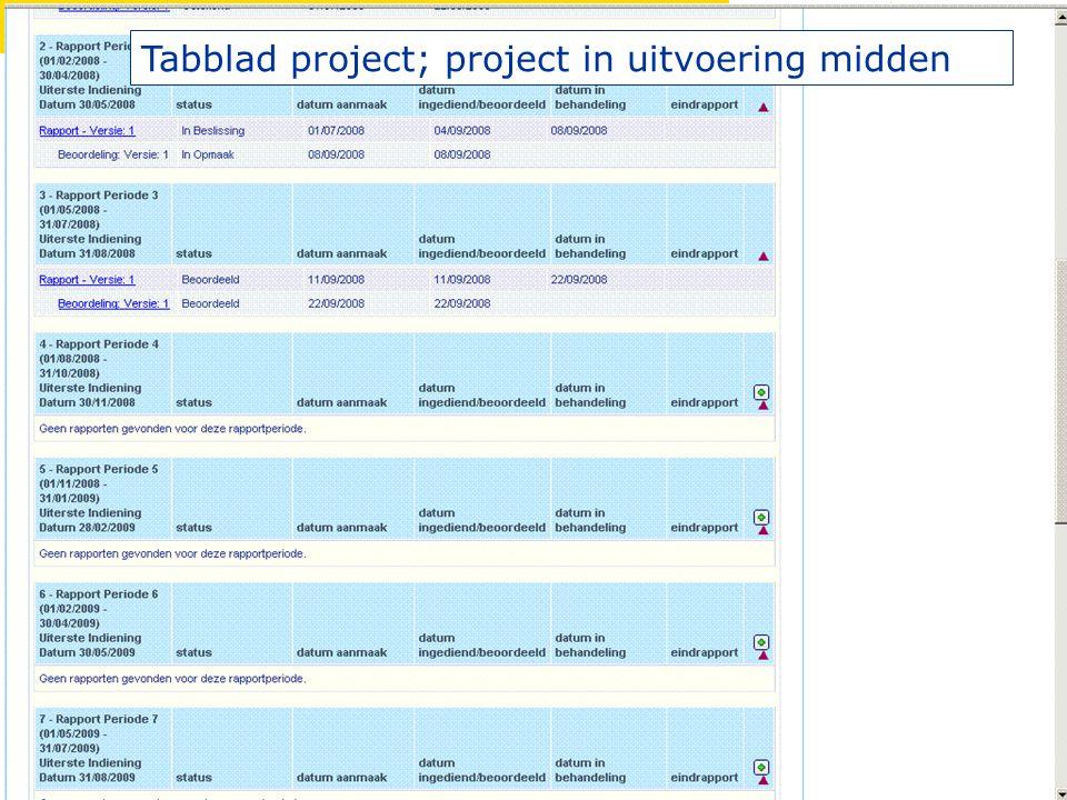 Tabblad project; project in uitvoering midden