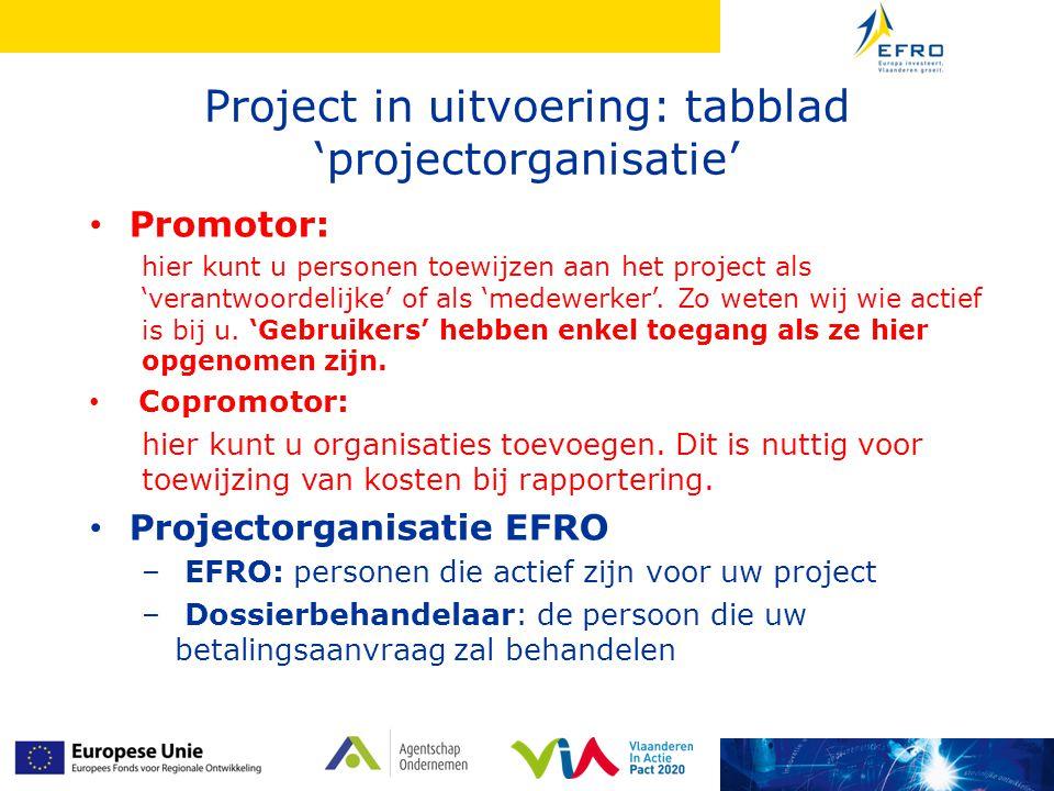 Project in uitvoering: tabblad 'projectorganisatie' • Promotor: hier kunt u personen toewijzen aan het project als 'verantwoordelijke' of als 'medewerker'.