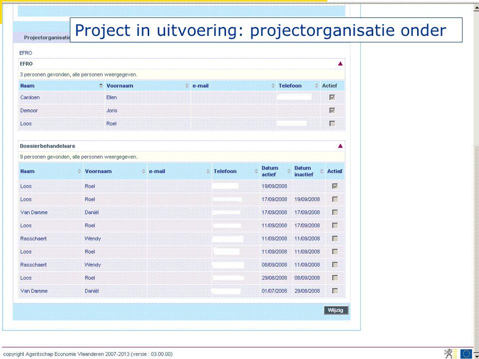 Project in uitvoering: projectorganisatie onder