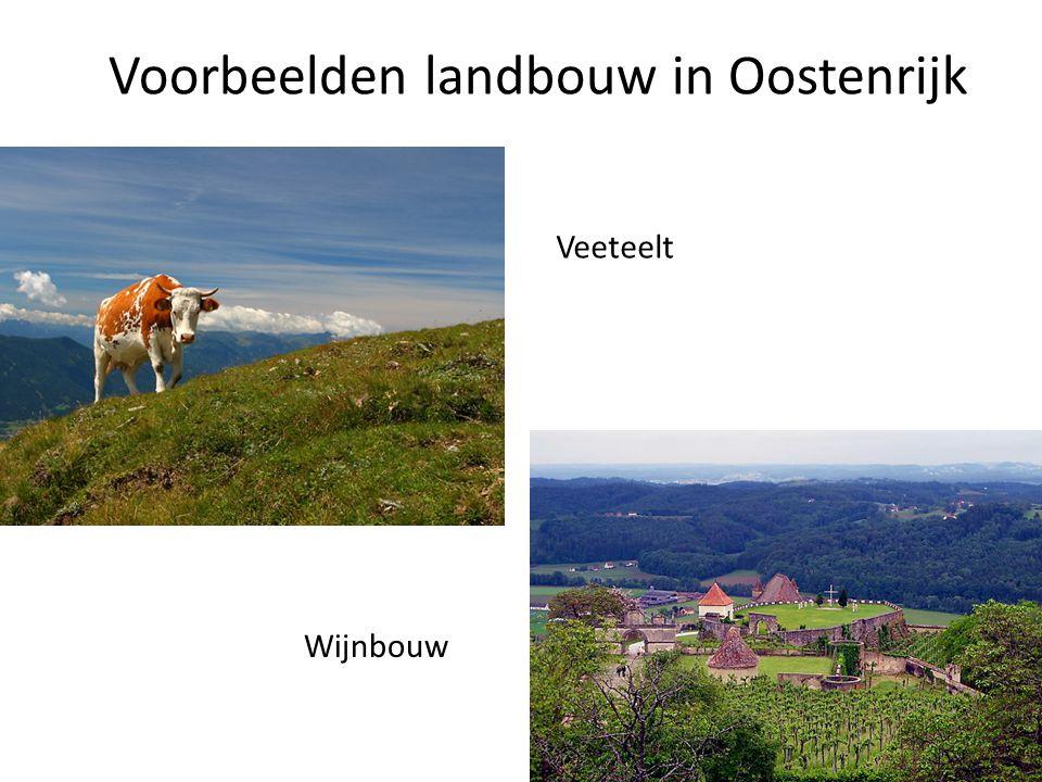 Vraag 12 a en b en c • In welke gebieden in Oostenrijk is de varkensteelt geconcentreerd.