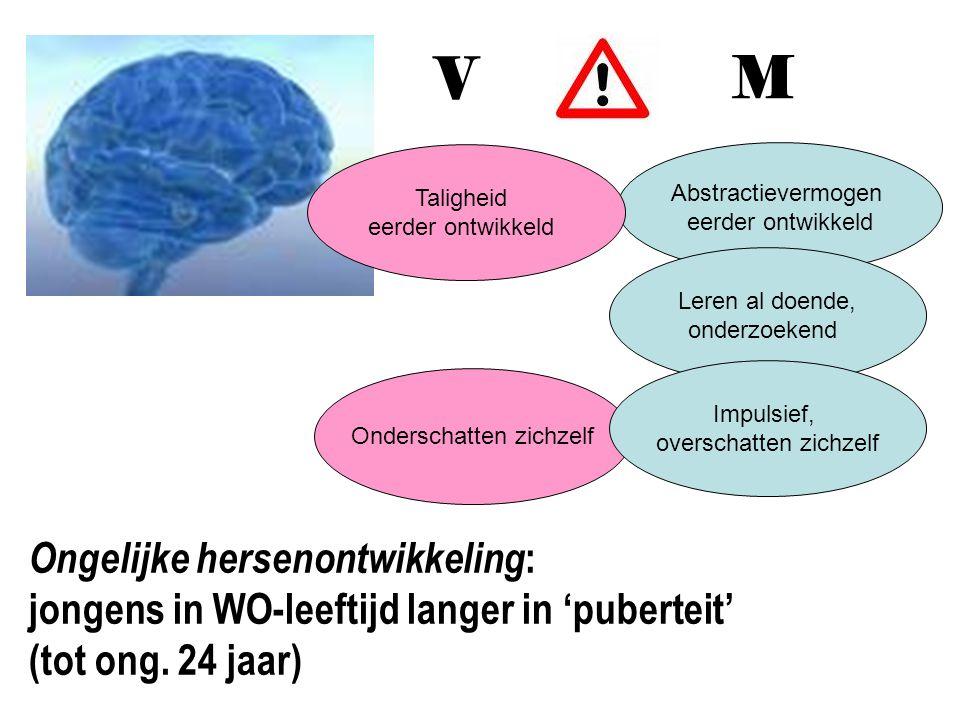 Abstractievermogen eerder ontwikkeld Onderschatten zichzelf Leren al doende, onderzoekend Impulsief, overschatten zichzelf V M Ongelijke hersenontwikk