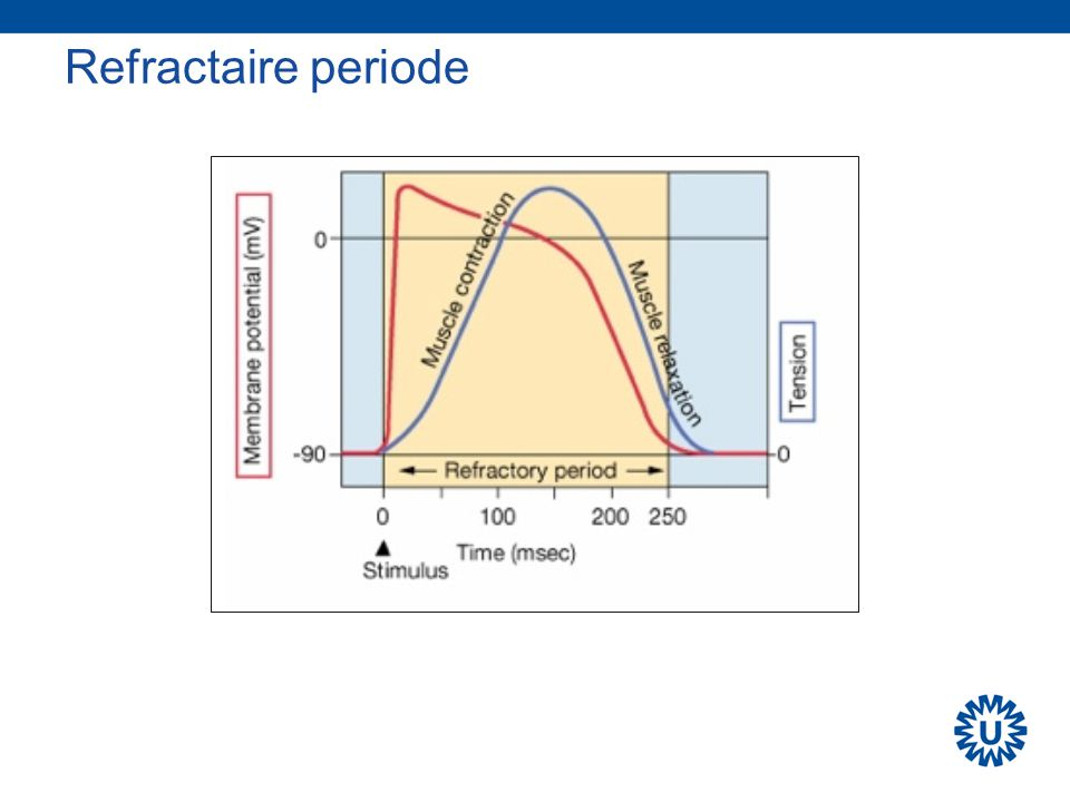 Refractaire periode