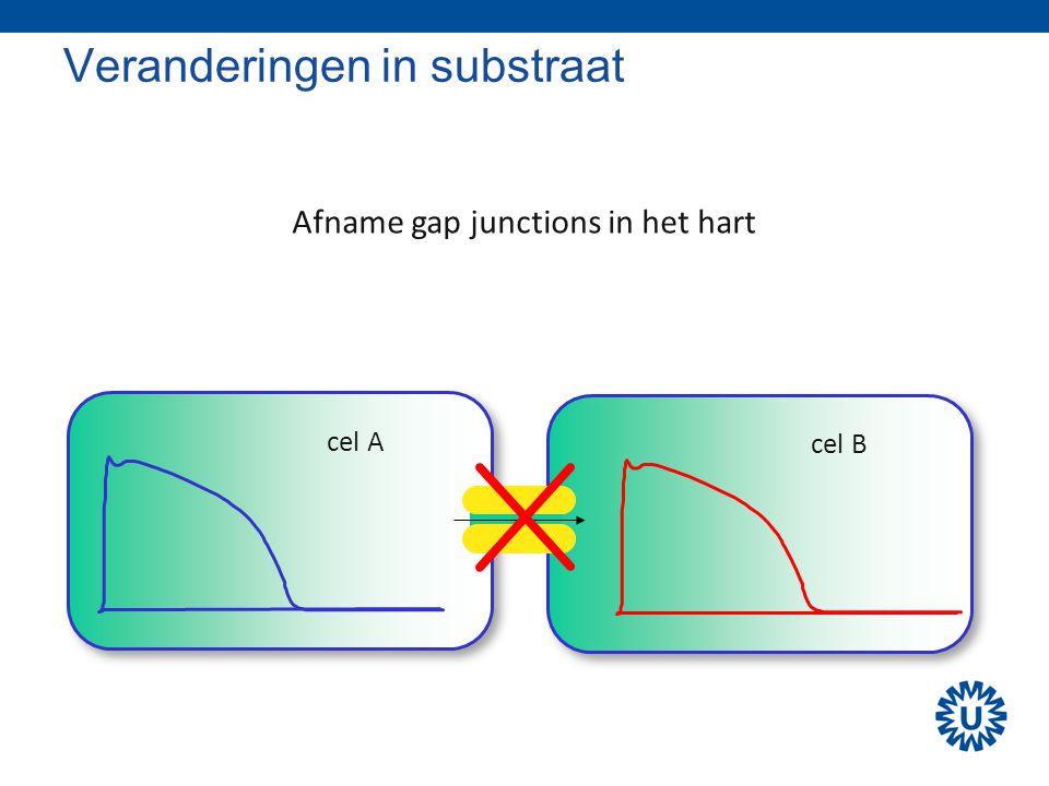 Veranderingen in substraat cel A cel B Afname gap junctions in het hart