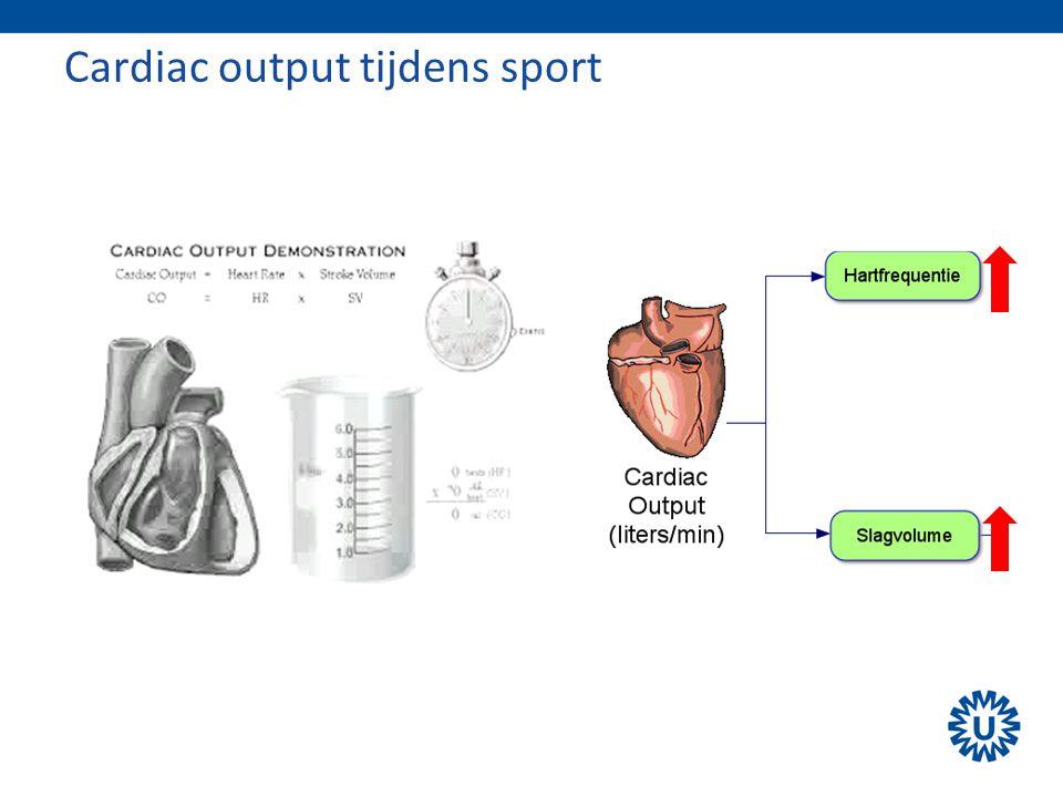 Cardiac output tijdens sport