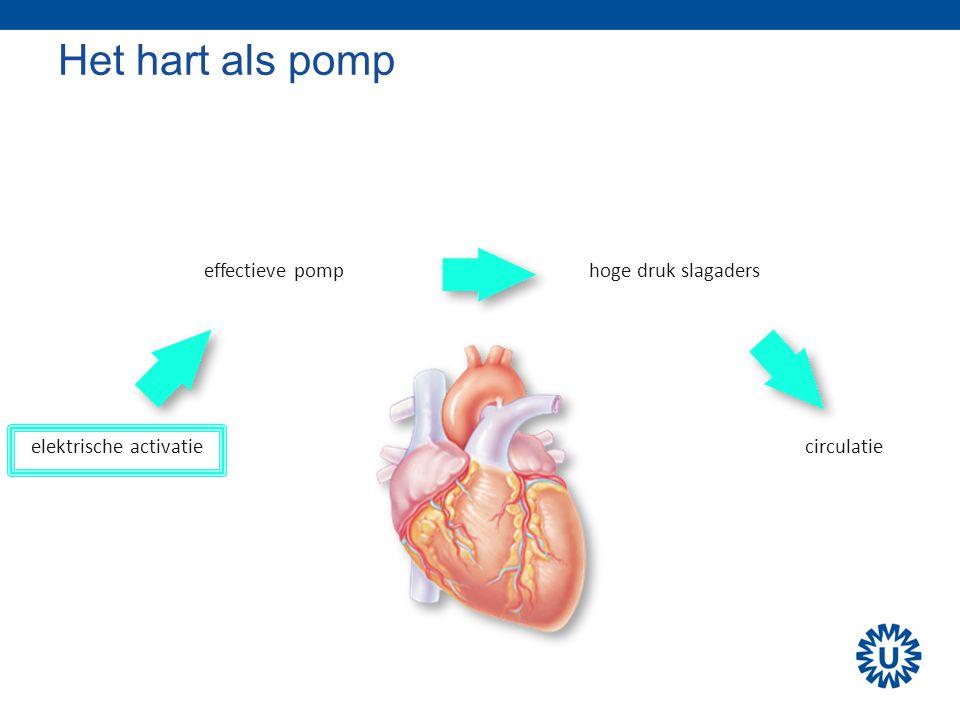 Het hart als pomp elektrische activatie effectieve pomphoge druk slagaders circulatie