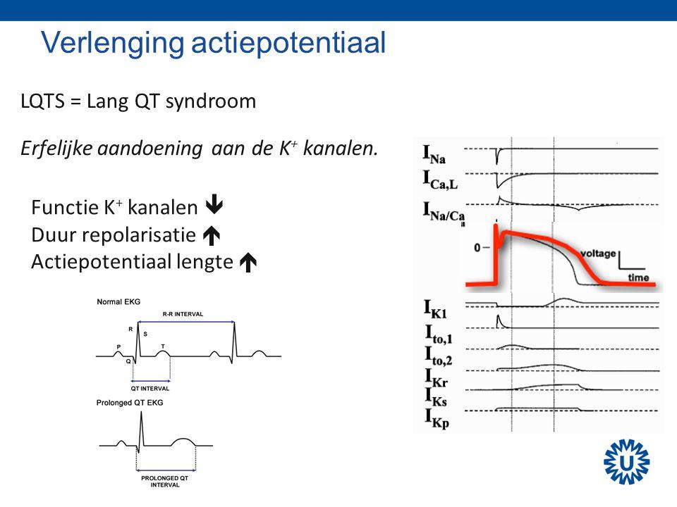 Verlenging actiepotentiaal LQTS = Lang QT syndroom Erfelijke aandoening aan de K + kanalen. Functie K + kanalen  Duur repolarisatie  Actiepotentiaal
