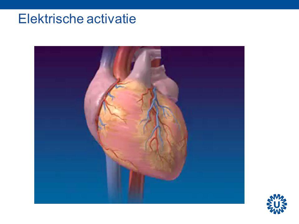 Cardiac output Hartslag (bpm)Slagvolume (ml)Cardiac output (L/min) In rust60 3.6 Sport1806010.8 Sport18010018 Hartslag (bpm)Slagvolume (ml)Cardiac output (L/min) In rust40903.6 Sport18015027 Normaal Topsport