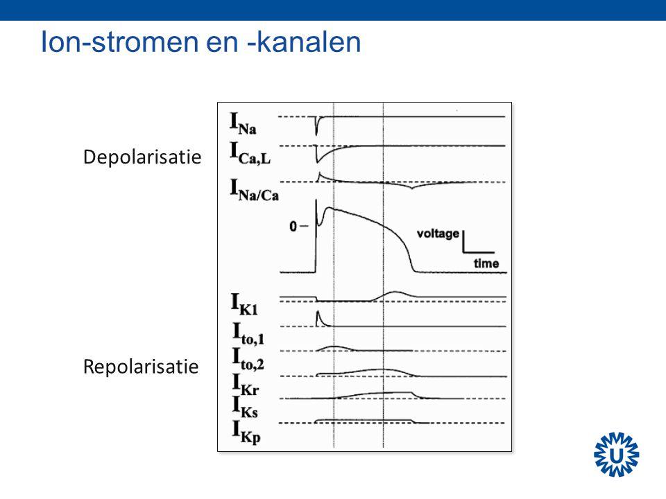 Ion-stromen en -kanalen Depolarisatie Repolarisatie