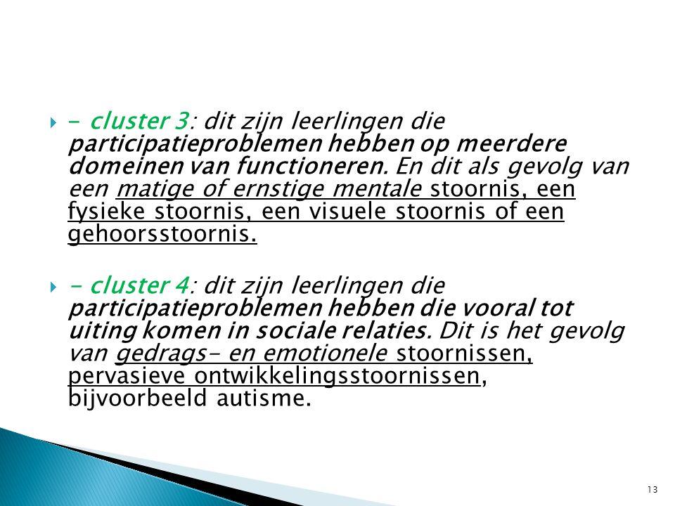  - cluster 3: dit zijn leerlingen die participatieproblemen hebben op meerdere domeinen van functioneren. En dit als gevolg van een matige of ernstig