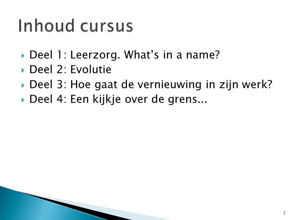  - cluster 3: dit zijn leerlingen die participatieproblemen hebben op meerdere domeinen van functioneren.