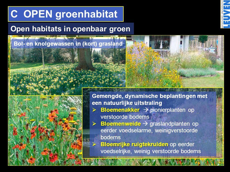 C OPEN groenhabitat Open habitats in openbaar groen Bol- en knolgewassen in (kort) grasland Gemengde, dynamische beplantingen met een natuurlijke uits