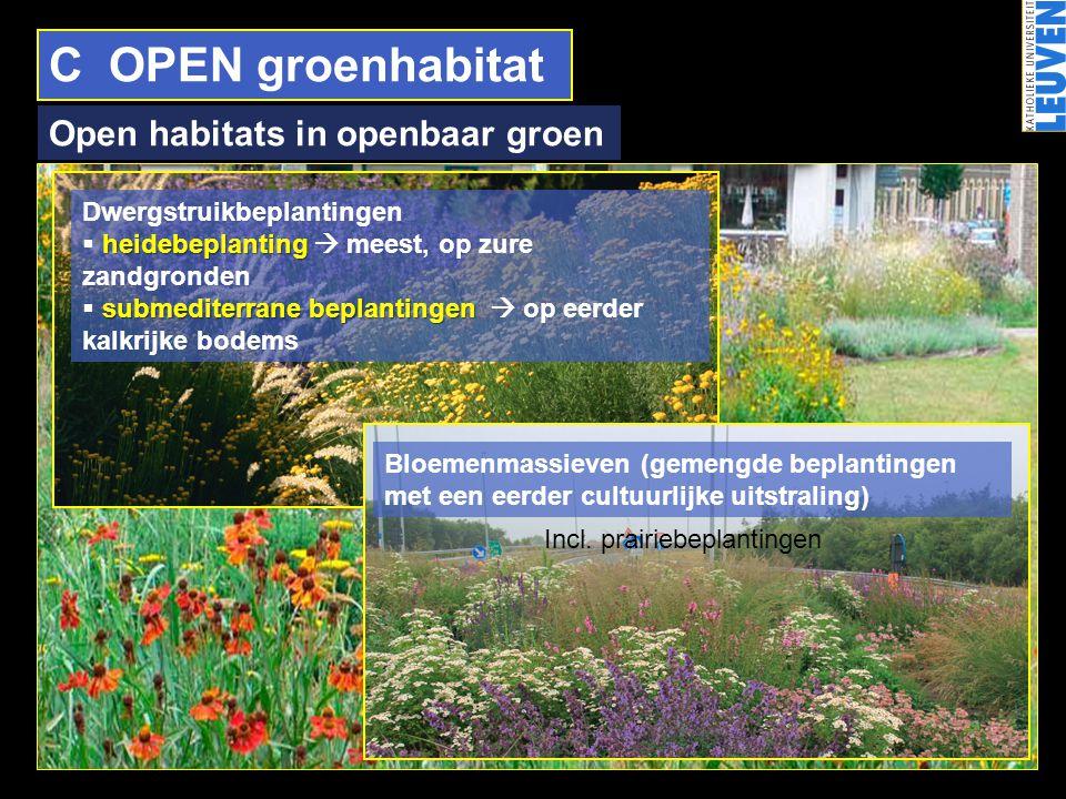 C OPEN groenhabitat Open habitats in openbaar groen Dwergstruikbeplantingen heidebeplanting  heidebeplanting  meest, op zure zandgronden submediterr
