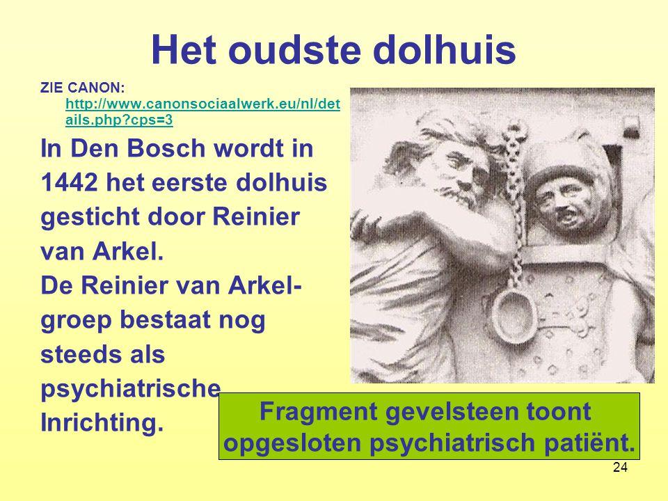 24 Het oudste dolhuis ZIE CANON: http://www.canonsociaalwerk.eu/nl/det ails.php?cps=3 http://www.canonsociaalwerk.eu/nl/det ails.php?cps=3 In Den Bosc