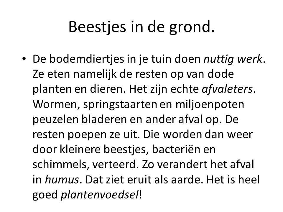 Beestjes in de grond.• De bodemdiertjes in je tuin doen nuttig werk.