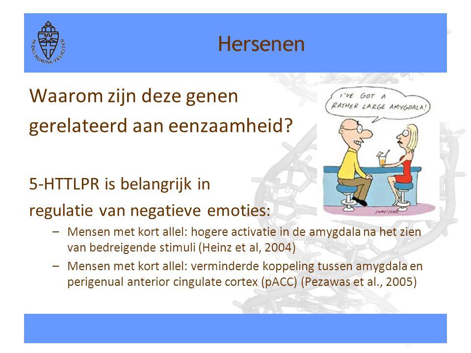 Hersenen Waarom zijn deze genen gerelateerd aan eenzaamheid? 5-HTTLPR is belangrijk in regulatie van negatieve emoties: –Mensen met kort allel: hogere