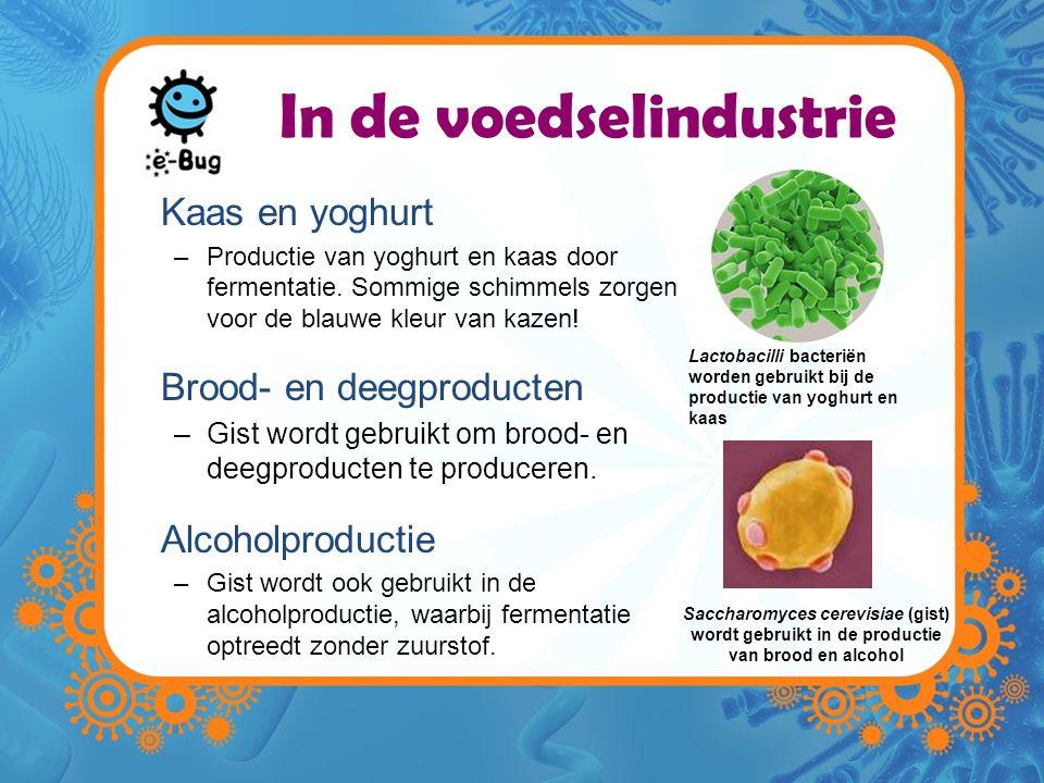 In de voedselindustrie Kaas en yoghurt –Productie van yoghurt en kaas door fermentatie.