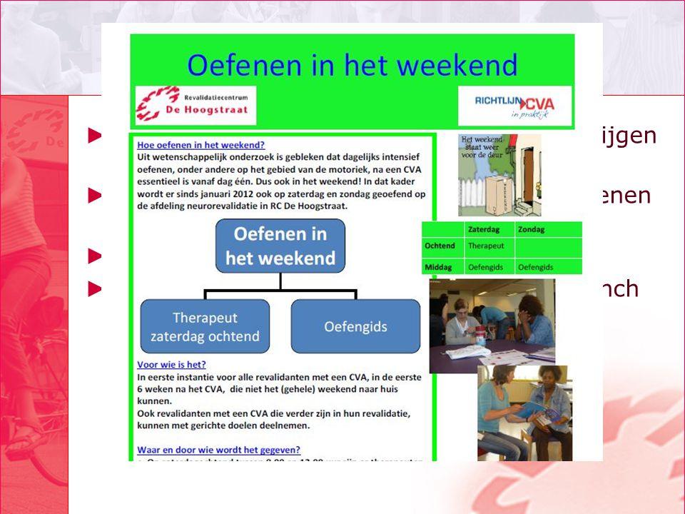 Informatie ► Tips voor implementatie: infoflyer te verkrijgen bij poster tijdens de lunch ► www.dehoogstraat.nl/revalideren/volwassenen /aandoening/be