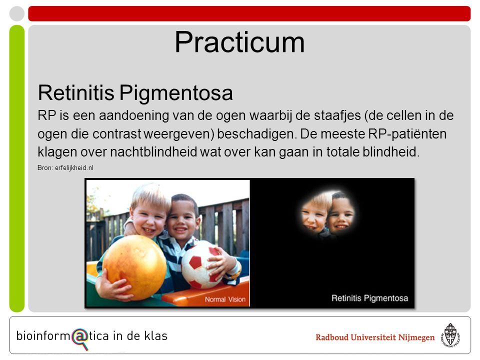 Aan de slag •Log in op de computer •Ga naar deze website: www.bioinformaticaindeklas.nl/lesmateriaal/rp/rp.html •Klik op 'Start practicum' in het menu •Volg de instructies op het scherm •Vul de antwoorden in op het antwoordenblad •Genen vergelijken •Mutaties zoeken •3D-structuur van een eiwit muteren Wat gaan we doen?