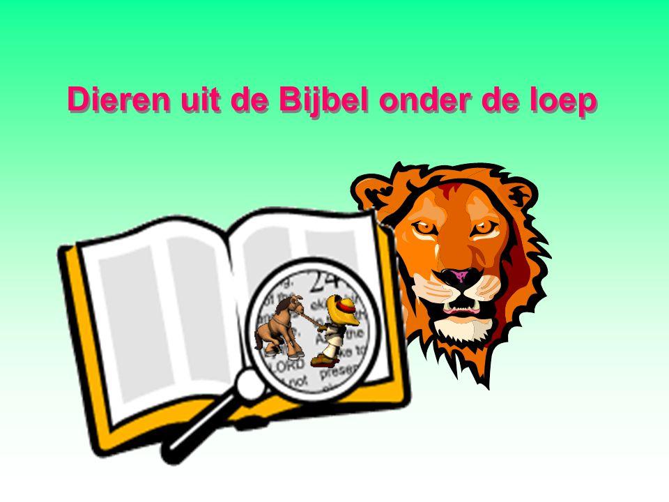 Dieren uit de Bijbel onder de loep