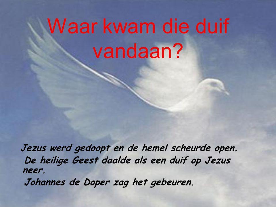 Waar kwam die duif vandaan.Jezus werd gedoopt en de hemel scheurde open.