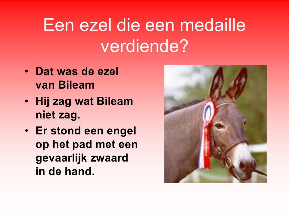 Een ezel die een medaille verdiende.•Dat was de ezel van Bileam •Hij zag wat Bileam niet zag.